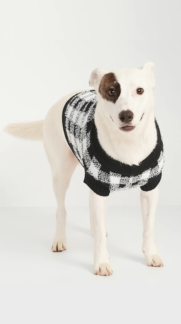 Old Navy's Cozy Sweater for Pets