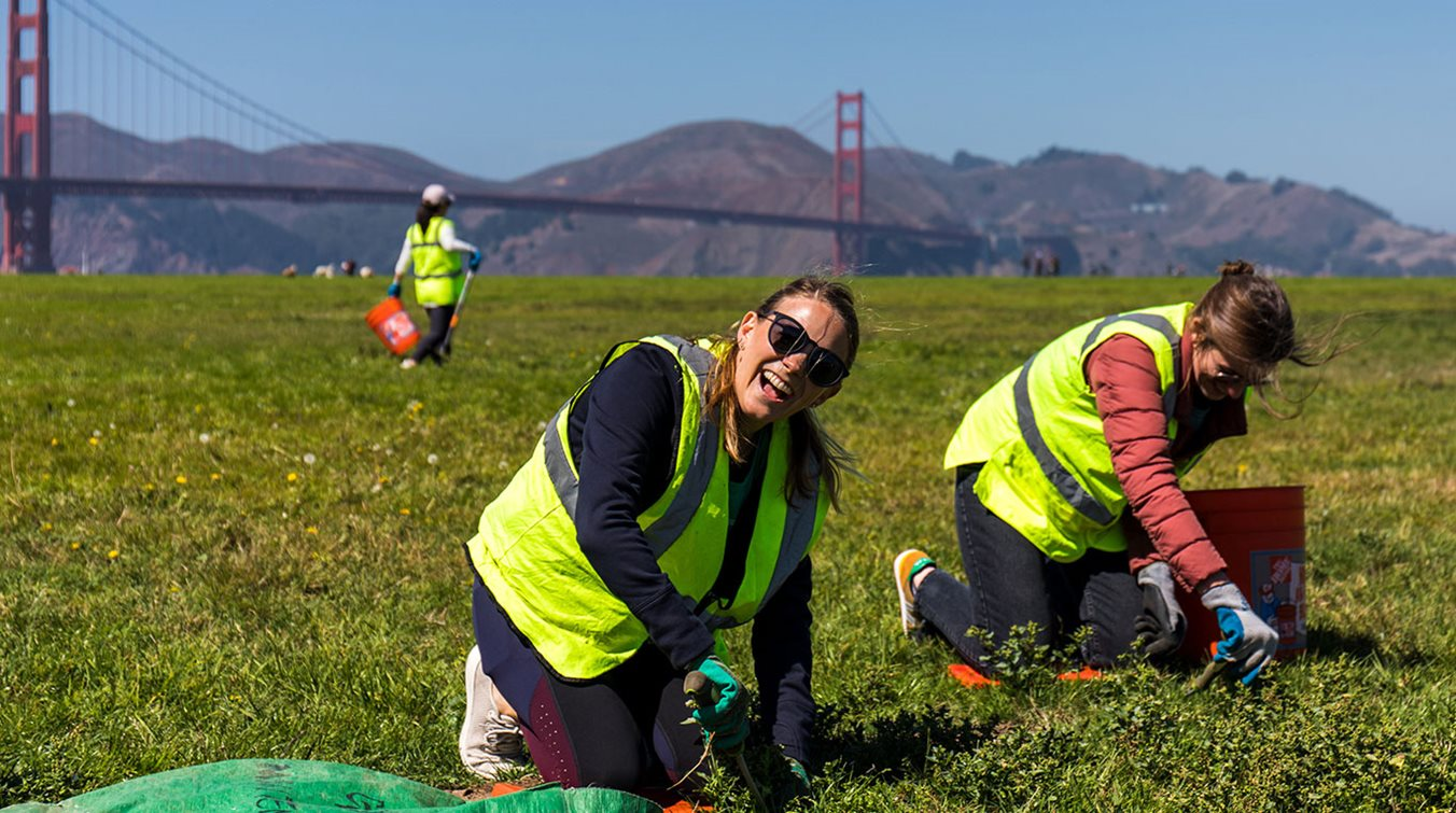 Volunteering at Crissy Fields